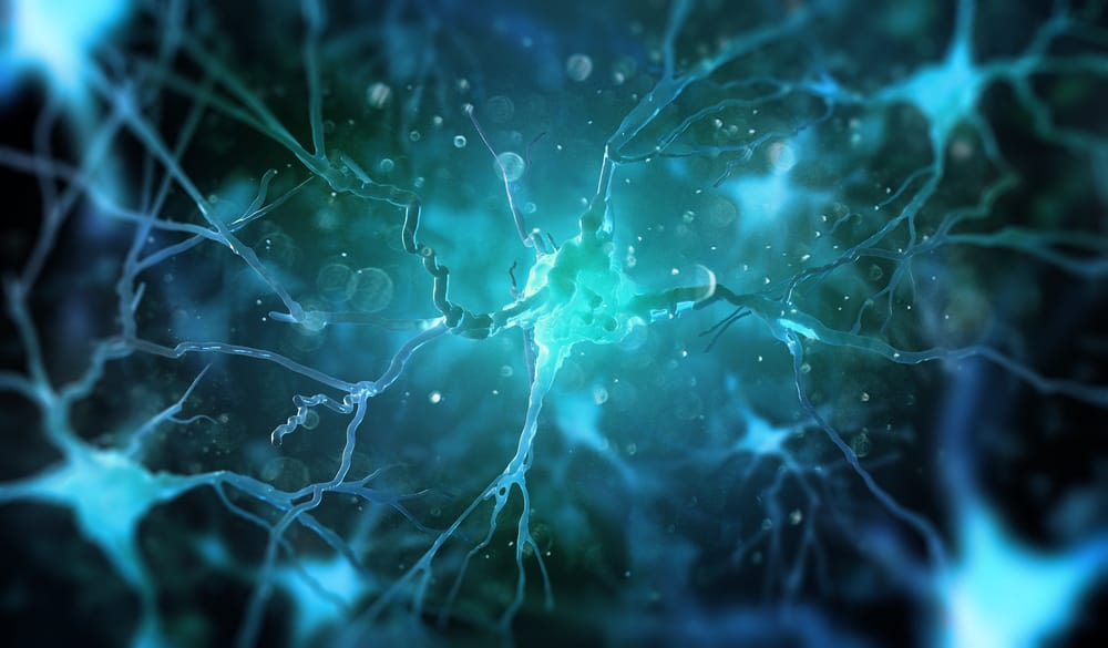 close up illustration of a synapse