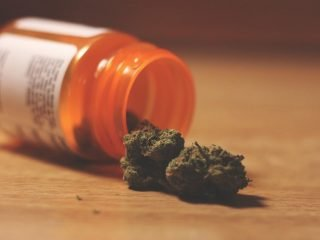 medical cannabis by post
