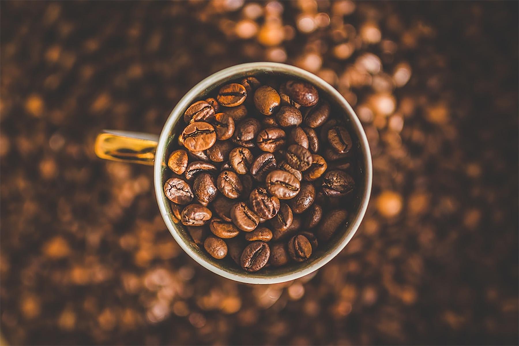 cbd coffee beans in a mug