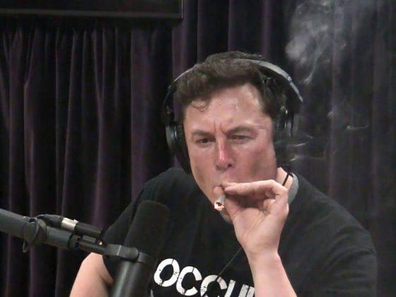 elon musk smoking weed