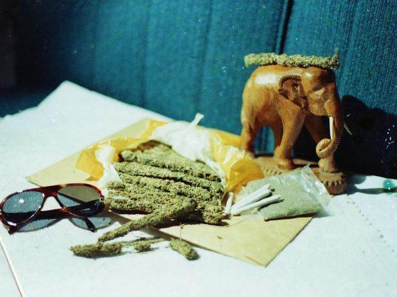 retro photo of thai stick cannabis